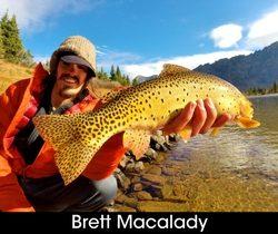 Brett-Macalady